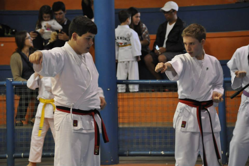 "Copa Barreto Taekwondo 2015  - <i class=""fa fa-download""></i> <a href=""../images/galeria/copa_barreto_2015/foto_10.jpg"" target=""_blank"" download>Download</a>"