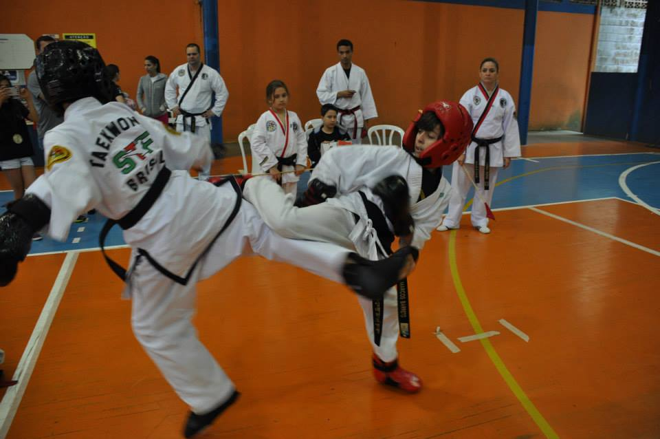 "Copa Barreto Taekwondo 2015  - <i class=""fa fa-download""></i> <a href=""../images/galeria/copa_barreto_2015/foto_101.jpg"" target=""_blank"" download>Download</a>"