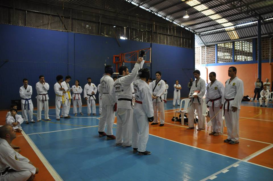 "Copa Barreto Taekwondo 2015  - <i class=""fa fa-download""></i> <a href=""../images/galeria/copa_barreto_2015/foto_107.jpg"" target=""_blank"" download>Download</a>"