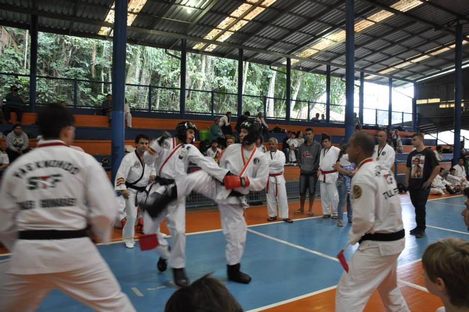 "Copa Barreto Taekwondo 2015  - <i class=""fa fa-download""></i> <a href=""../images/galeria/copa_barreto_2015/foto_108.jpg"" target=""_blank"" download>Download</a>"