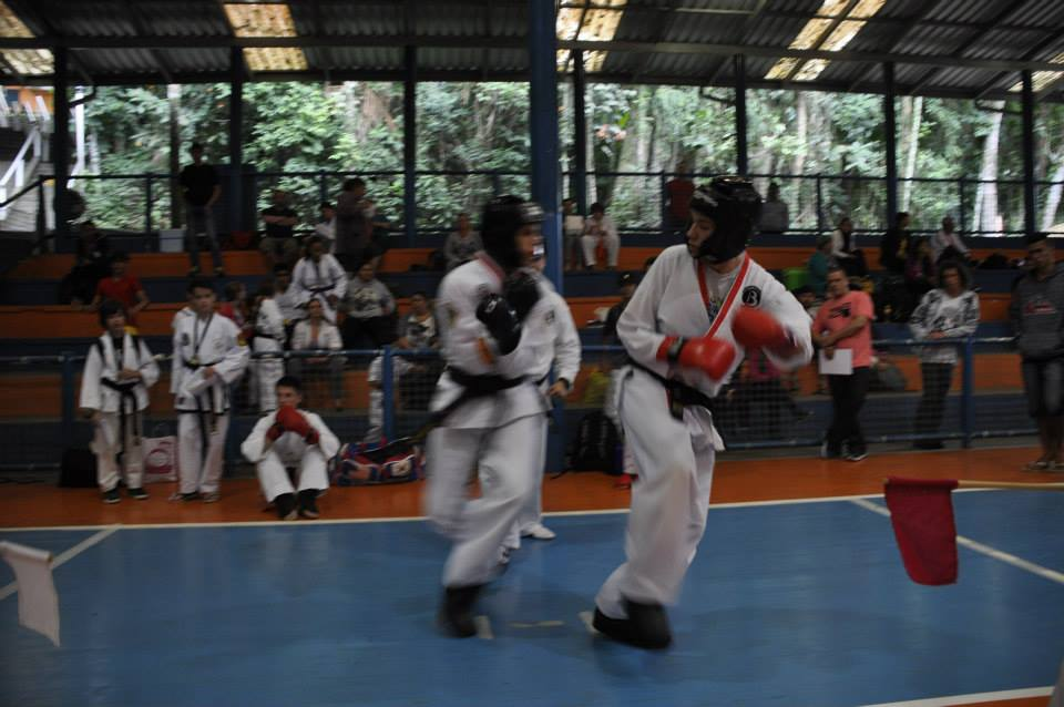 "Copa Barreto Taekwondo 2015  - <i class=""fa fa-download""></i> <a href=""../images/galeria/copa_barreto_2015/foto_110.jpg"" target=""_blank"" download>Download</a>"