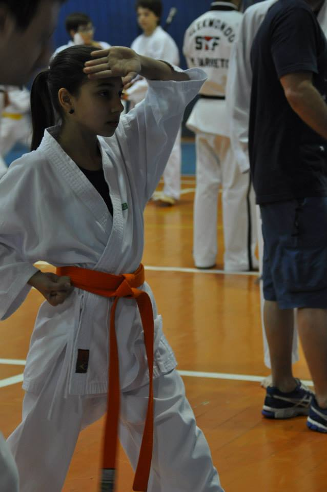 "Copa Barreto Taekwondo 2015  - <i class=""fa fa-download""></i> <a href=""../images/galeria/copa_barreto_2015/foto_12.jpg"" target=""_blank"" download>Download</a>"