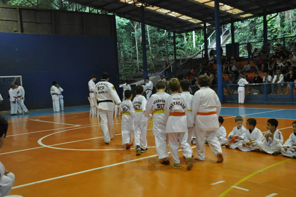 "Copa Barreto Taekwondo 2015  - <i class=""fa fa-download""></i> <a href=""../images/galeria/copa_barreto_2015/foto_36.jpg"" target=""_blank"" download>Download</a>"
