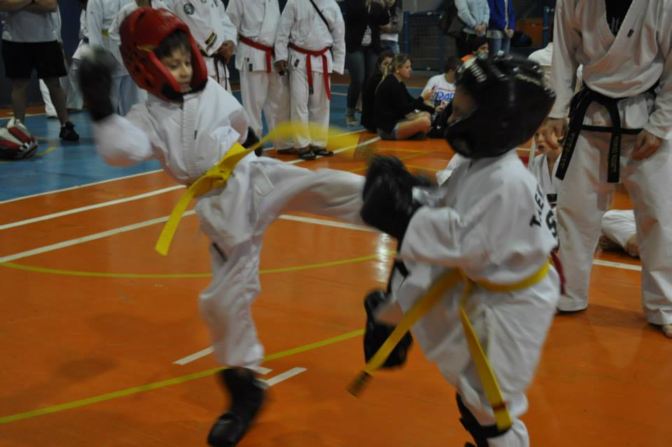 "Copa Barreto Taekwondo 2015  - <i class=""fa fa-download""></i> <a href=""../images/galeria/copa_barreto_2015/foto_49.jpg"" target=""_blank"" download>Download</a>"