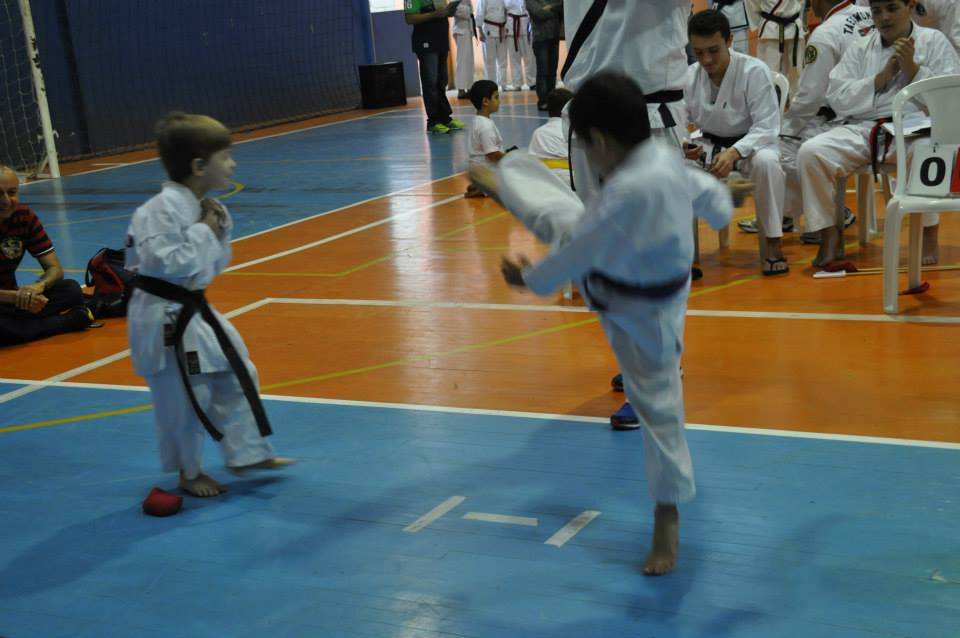 "Copa Barreto Taekwondo 2015  - <i class=""fa fa-download""></i> <a href=""../images/galeria/copa_barreto_2015/foto_52.jpg"" target=""_blank"" download>Download</a>"
