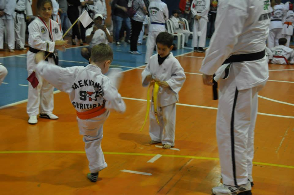 "Copa Barreto Taekwondo 2015  - <i class=""fa fa-download""></i> <a href=""../images/galeria/copa_barreto_2015/foto_54.jpg"" target=""_blank"" download>Download</a>"