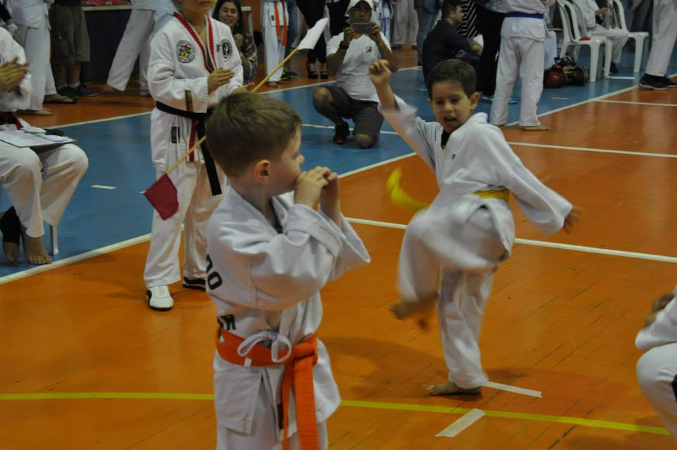 "Copa Barreto Taekwondo 2015  - <i class=""fa fa-download""></i> <a href=""../images/galeria/copa_barreto_2015/foto_55.jpg"" target=""_blank"" download>Download</a>"