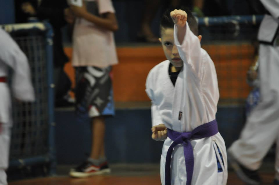 "Copa Barreto Taekwondo 2015  - <i class=""fa fa-download""></i> <a href=""../images/galeria/copa_barreto_2015/foto_6.jpg"" target=""_blank"" download>Download</a>"