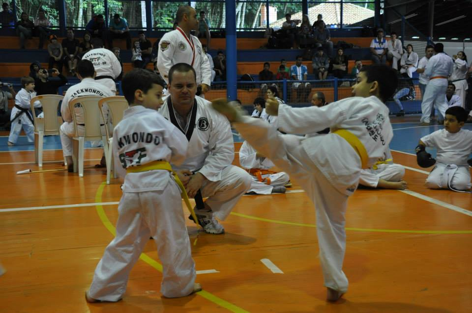 "Copa Barreto Taekwondo 2015  - <i class=""fa fa-download""></i> <a href=""../images/galeria/copa_barreto_2015/foto_63.jpg"" target=""_blank"" download>Download</a>"