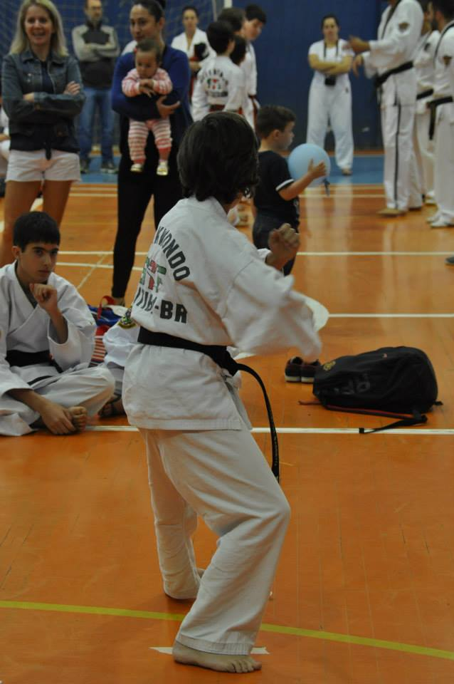 "Copa Barreto Taekwondo 2015  - <i class=""fa fa-download""></i> <a href=""../images/galeria/copa_barreto_2015/foto_95.jpg"" target=""_blank"" download>Download</a>"